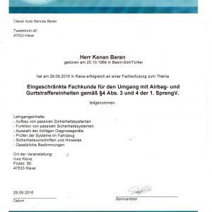 Zertifikat Airbag und Gurtstraffer einheiten